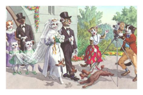cat-wedding (1)