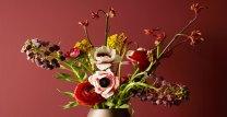 LADY_Pure_Color_2846_Bordeaux_Jotun_Maling_tcm21-30397