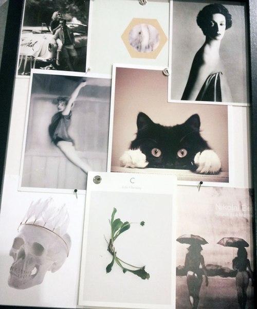 Bilder-fra-Camillas-samsung-191